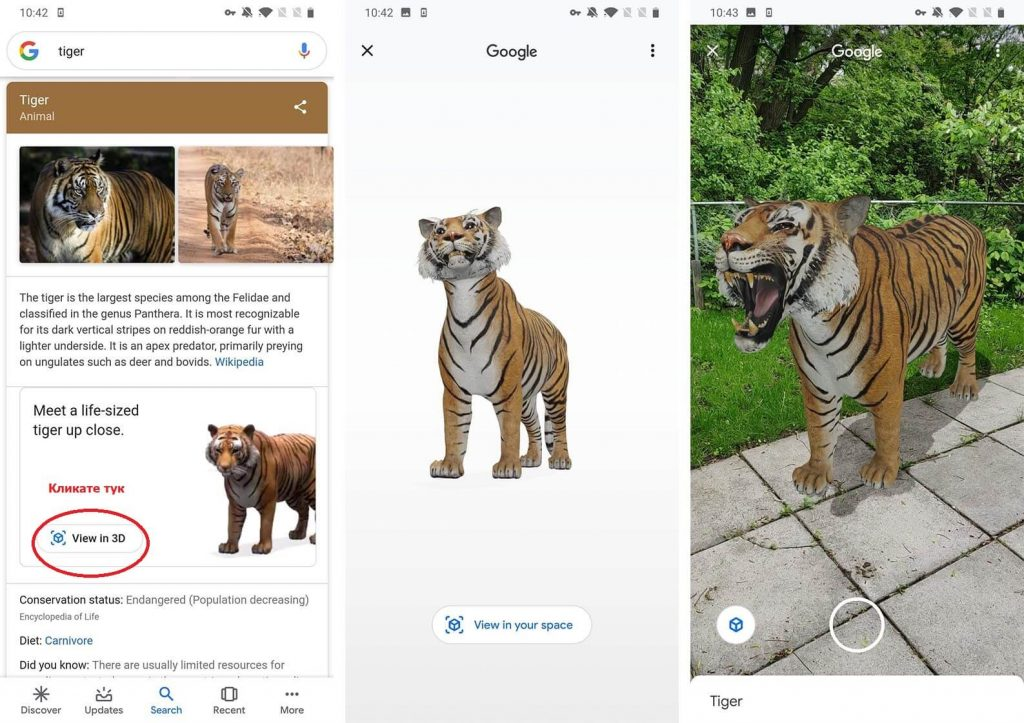 google 3d ar tiger